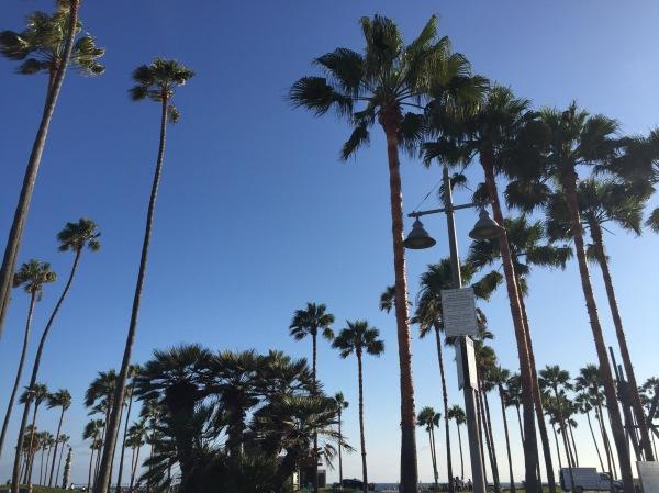 Venice Beach LA by 7deadlythings